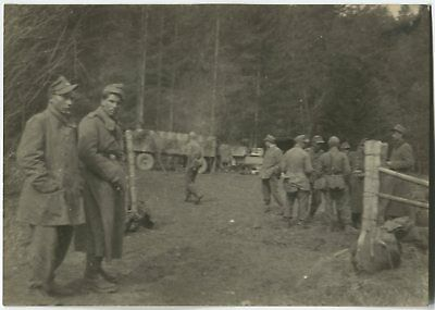 German Wwii Archive Photo: Group Of Soldiers In The Forest