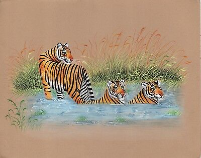 Royal Bengal Tiger Art Hand Painted Indian Wild Life Nature Watercolor Painting