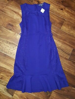 NWT a pea in the pod maternity Dress In Royal Blue Size M