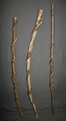 3 Raw Smaller Vine Twisted Craft Wood Carving Blank Sticks Witch Wizard Wand #66