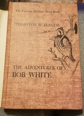 Vintage Book ~ The Adventures Of Bob White By Thornton W Burgess 1919 Copyright