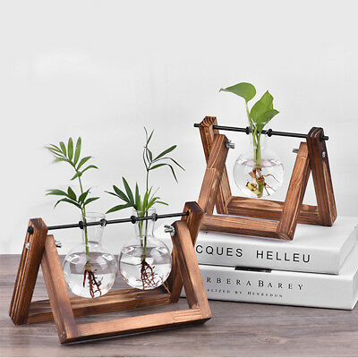 Flower Pots Glass Vase Hanging Vases Planter Bulb +Vintage Wood Stand for Decors