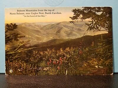 1936 Vintage Postcard Balsam Mountains from Top of Plotts Balsam Eagles Nest NC