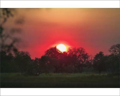 "18251109 10""x8"" (25x20cm) Print of Sunrise in the Okavango Delta"