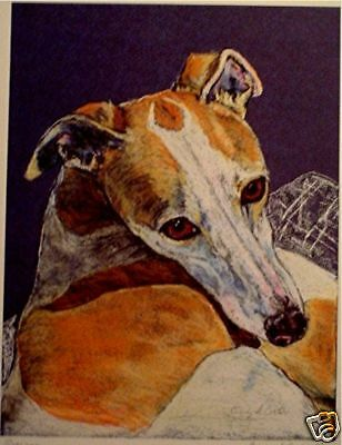 Print of Pastel of Whippet relaxing looking up, Greyhound sighthound coursing