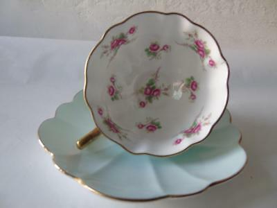 Rare Shelley Stratford Wildflowers Roses Atholl Shape #13965 Cup & Saucer Set