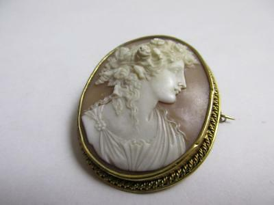 finely carved Shell Cameo 18k Gold Brooch Pins Antique Victorian c1840 k716