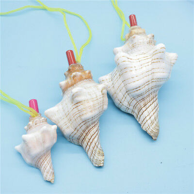 Natural Conch Horn Whistle Shells Sea Snail Kid Toy Novelty Gift Chic Cute Multi