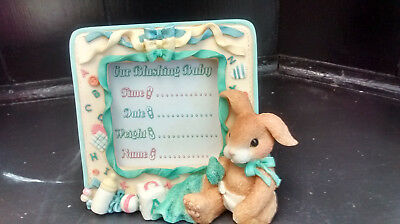 My Blushing Bunnies ( Adorable) New Baby Photo Frame