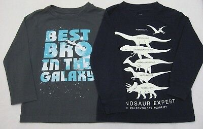 Boys sz 4T Lot of 2 T-shirts Tees Best Bro Brother Dinosaur Expert Glow in Dark
