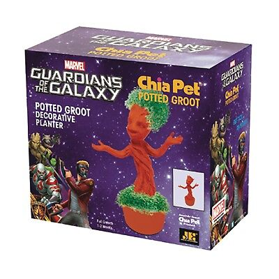 Chia Pet Potted Groot Decorative Pottery Planter Easy to Do and Fun to Grow