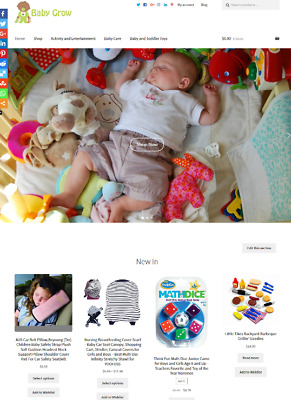 Baby Products Website Business For Sale Unlimited Stock SALE