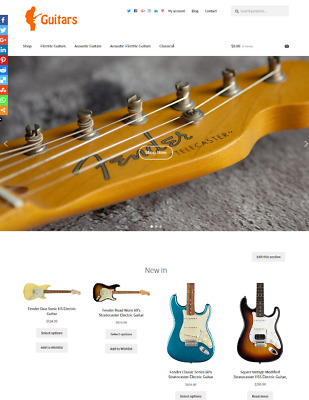 Guitars Website Business For Sale Unlimited Stock ON SALE