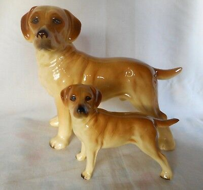 Attractive Large & Small  Porcelain  ~ Golden Labrador Dogs ~ Lovely Display !