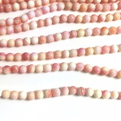 "15.5""  - Natural Pink Queen Conch Shell Round Beads 4mm, NEW DIY Design Rare"