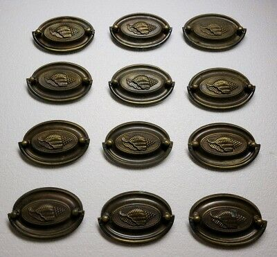"""12 Matching Solid Brass Oval Drawer Pulls 2 5/8"""" Center To Center"""