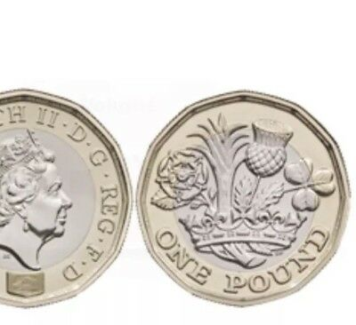 2019 One Pound brilliant uncirculated coins