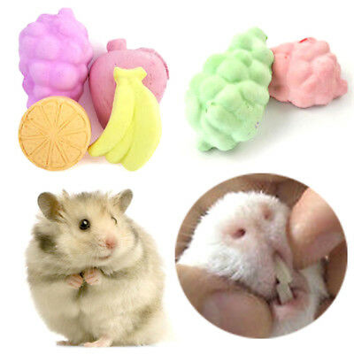 5x fruit chew toy hamster rat chinchilla rabbit teeth grinding mineral stoneHGUK