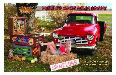 WhizBang Pinball Whoa Nellie! Big Juicy Melons premium promotional print