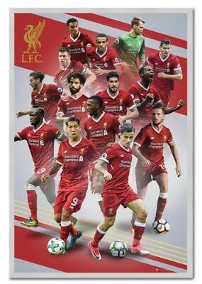 Liverpool FC Players 17-18 Poster 61 x 91.5cm