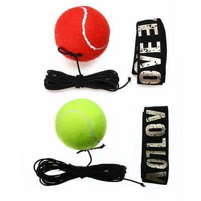 Boxing Punching Training Speed Ball Tennis Punch Training Fitness Sports Hot WT