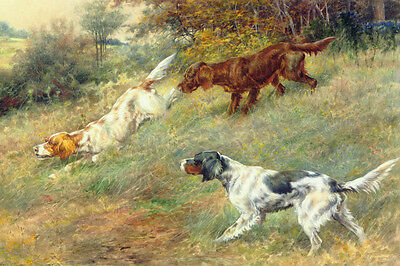 English & Irish Setter Dogs by Edmund Osthaus 1910 LARGE New Blank Note Cards