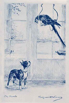Boston Terrier Dog & Parrot Marguerite Kirmse 1924 New (8) Large Note Cards
