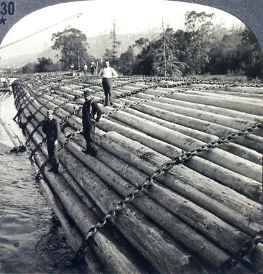 Keystone Stereoview Logs on Columbia River, Oregon OR from the 1930s T400 Set #B