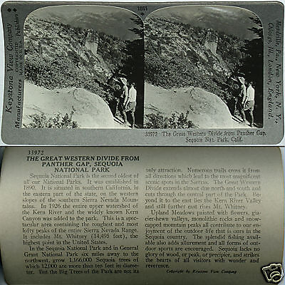 Keystone Stereoview WESTERN DIVIDE, Sequoia Nat Park, CA From 600/1200 Card Set