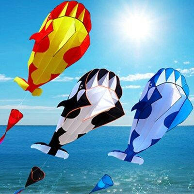 Huge 3D Cartoon Whale Software Kite Single Line BechWith String Boys Outdoor Toy