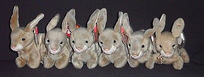 TY LOT of 6 NIBBLY the RABBIT BEANIE BABY - MINT with MINT TAGS - SEVERAL LOTS