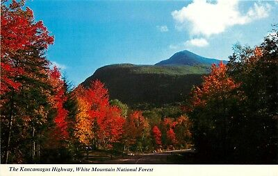 FMRA WHITE MOUNTAIN NATIONAL FOREST NH KANCAMAGUS HIGHWAY POSTCARD c733