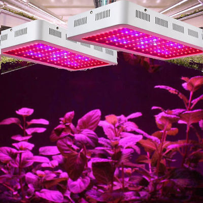 2X 2000W LED Grow Light Indoor VANDER Full Spectrum Hydro For Plant Bloom Lamp