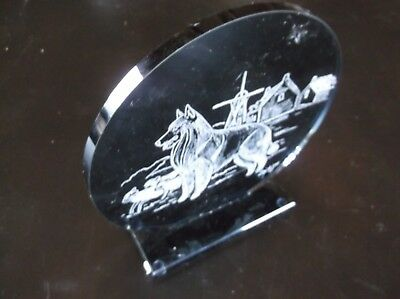 Belgian Sheepdog  -New design, Hand engraved Glass Sculpture by Ingrid Jonsson.