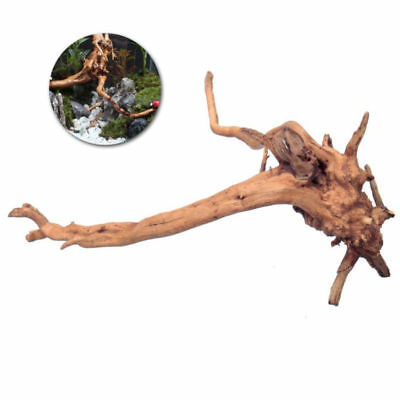 Aquarium Decorations Natural Branch Driftwood for Fish Tank Decoration