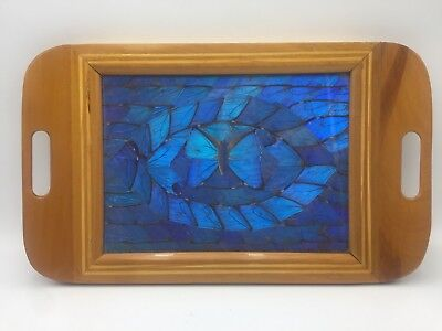 ART DECO Brilliant Blue BUTTERFLY WING TRAY Stunning Vintage Brazil