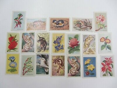 DISCOVER AUSTRALIA WITH SHELL Trading Cards 19 near perfect