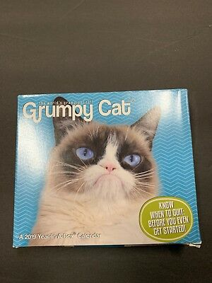 Grumpy Cat Year In A Box Calendar 2017 New 1640 Picclick