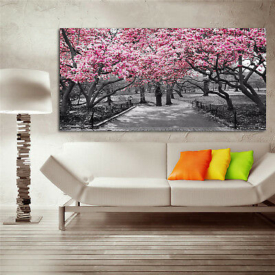 Cherry blossoms Pink Blossoms Wall Art Print Picture Canvas Unframed Prints