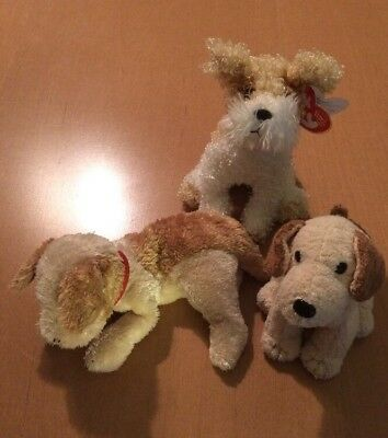 3 Ty Beanie Babies Puppy Dogs Plush  Rufus 11bbe12f0