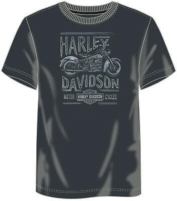 Harley-Davidson Fanatics Endless Smoke T-Shirt Gr. XL - Blue Graphite (Grau)