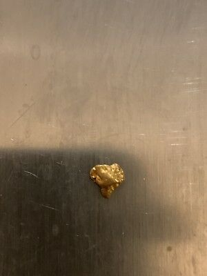 .48  Gold Nugget