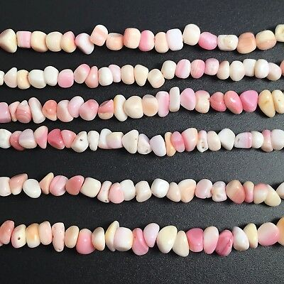 "15.5""  - Natural Pink Queen Conch Shell Freeform Chip Beads , NEW DIY Design"