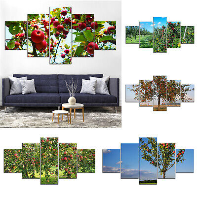 Apple Fruit Tree Canvas Print Painting Framed Home Decor Wall Art Poster 5Pcs
