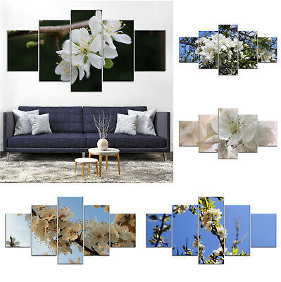 Apple Tree Blossom Flower Canvas Print Painting Home Decor Wall Art Poster ff 5P