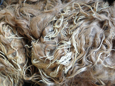 Natural SURI alpaca fleece - all colours avail - spinning felting