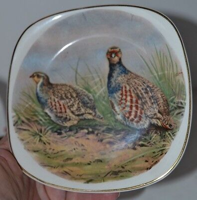 Vintage Staffordshire Crown Square Plate Phesants Birds