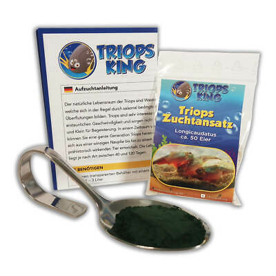 Triops Longicaudatus Tadpole Starter Kit incl. feed, triops and instructions