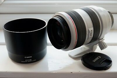CANON EF 70-300mm f/4-5.6L IS USM LENS EXC+++, GENUINE TRIPOD MOUNT RING C (wii)