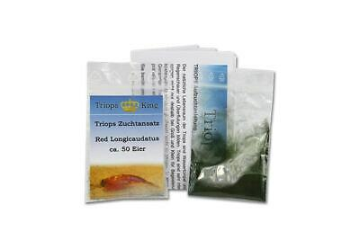 Triops Red Longicaudatus Tadpole Shrimp Starter Kit by Triops King Triops + Feed